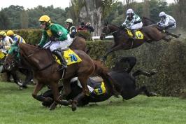 Na start Velké pardubické se letos postaví 21 koní, obhájce poveze jiného jezdce