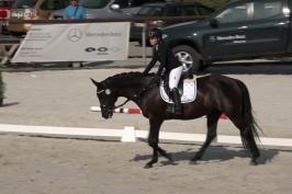 Vištalová se chystá na Světové jezdecké hry, vyhrála domácí mistrovství v paradrezuře
