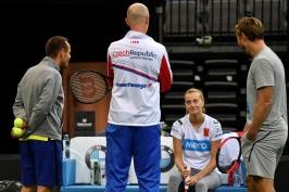 Kvitová trénovala kvůli nemoci jen krátce. Panika není na místě, uklidňuje před finále Pála