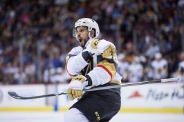 Hyka si řekl hattrickem v AHL o další pozvánku do sestavy Vegas. Dva góly dali Kaut se Zadinou
