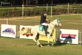 Útok na medaili zastavili koně. Češi obsadili ve smíšené štafetě třináctou příčku